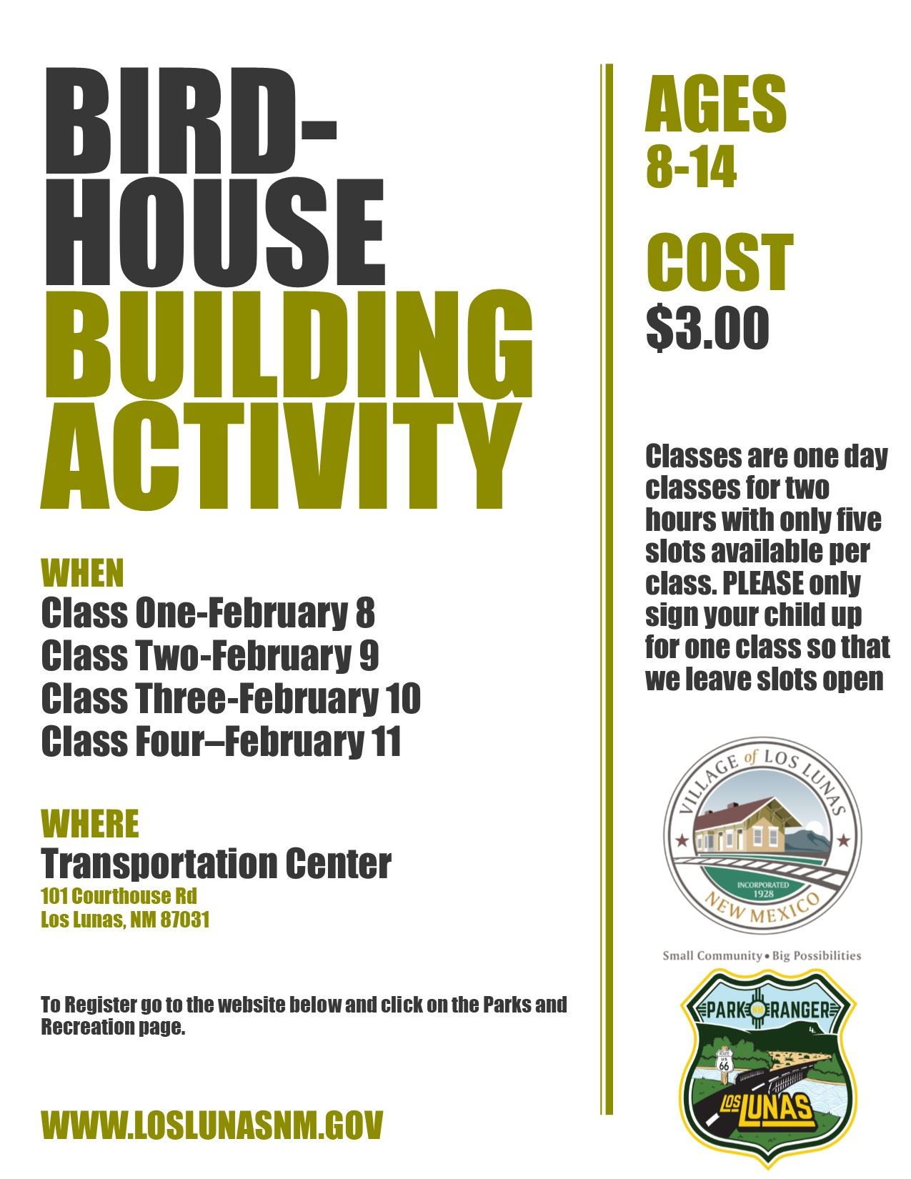 Feb bird house flyer